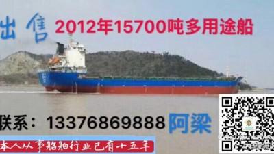 出售2012年15700吨多用途船(872箱)