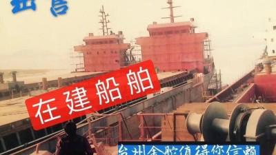 承接46000吨新型近海散货船建造